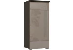 Шкаф распашной однодверный Верона Люкс 103 см вариант №1 (венге/капучино глянец)